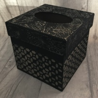 Pentart Tissue Box Demo 2
